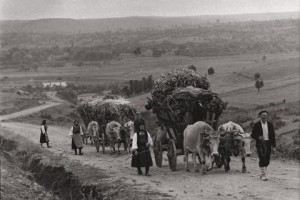 Picture of Greek Villagers
